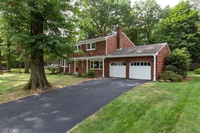 Boonton Town Single Family Home For Sale: 3 Beverly Rd