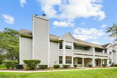 Somerset County Condo/Townhouse For Sale: 15 Oswestry Way
