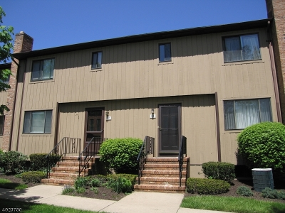 Florham Park Boro NJ Rental For Rent: $3,000