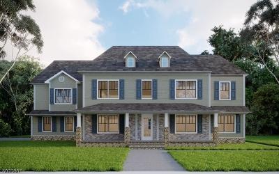 Hunterdon County Single Family Home For Sale: 00 Cirrus Lane