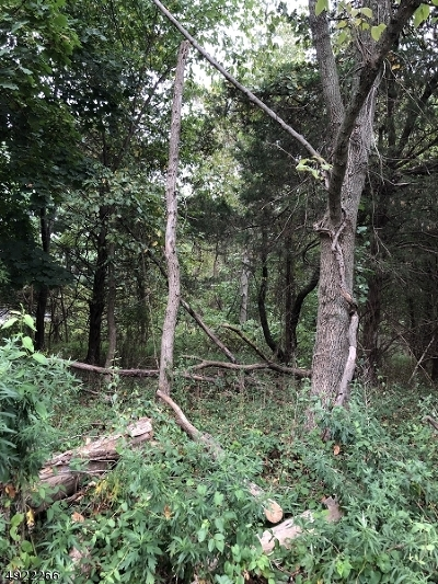 Montgomery Twp. NJ Residential Lots & Land For Sale: $50,000