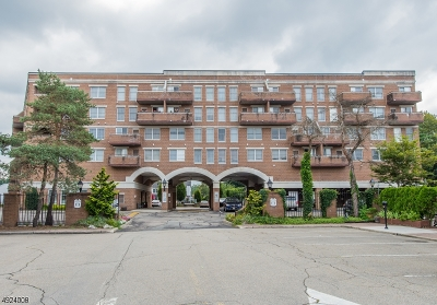 Passaic County Condo/Townhouse For Sale: 23 Iron Forge Sq