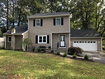 Byram Twp. Single Family Home For Sale: 43 Chestnut St