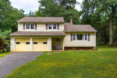 Bridgewater Twp. Single Family Home For Sale: 551 Juniper Ln