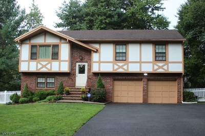 Warren Twp. NJ Single Family Home For Sale: $499,000