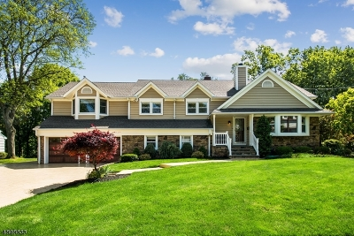 Westfield Town NJ Single Family Home For Sale: $939,000