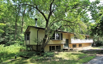 Lebanon Twp. Single Family Home For Sale: 11 Pine Ridge Rd