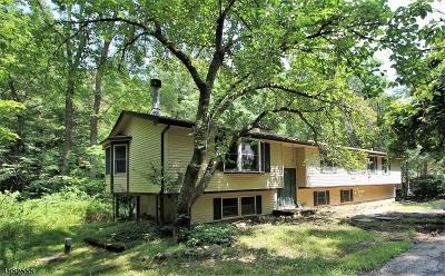 Hunterdon County Single Family Home For Sale: 11 Pine Ridge Rd