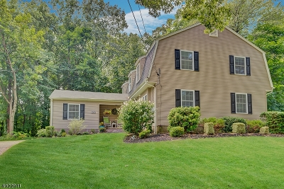 Montville Twp. Single Family Home For Sale: 20 Mac Leay Rd