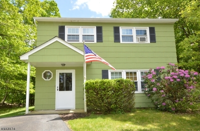 Sussex County Single Family Home For Sale: 343 Dupont Ave
