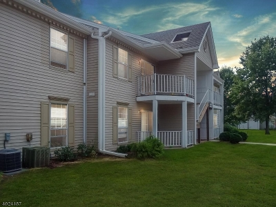 Bridgewater Twp. Condo/Townhouse For Sale: 2713 Lindsley Rd #2713