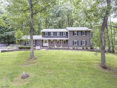 Hunterdon County Single Family Home For Sale: 1 Walnut Dr