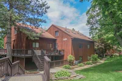 Vernon Twp. Condo/Townhouse For Sale: 3 Squaw Valley Ct Unit 6