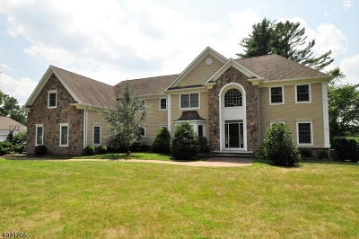 Bridgewater Twp. Single Family Home For Sale: 1680 Washington Valley Rd