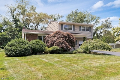East Brunswick Twp. Single Family Home For Sale: 26 Rath Ln