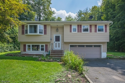 Sussex County Single Family Home For Sale: 28 Adams Drive
