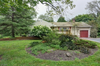 Franklin Twp. Single Family Home For Sale: 7 Three Acre Ln