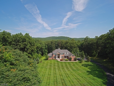 Sparta Twp. Single Family Home For Sale: 30 Brandy Ridge Rd