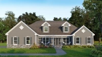 Hunterdon County Single Family Home For Sale: Cirrus Ln