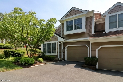 Bedminster Twp. Condo/Townhouse For Sale: 9 Stone Edge Rd