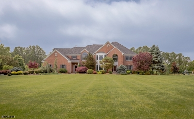 Hunterdon County Single Family Home For Sale: 10 Jacobus Ln