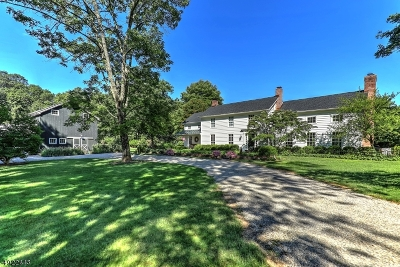 Hunterdon County Single Family Home For Sale: 20 Meadow Lane