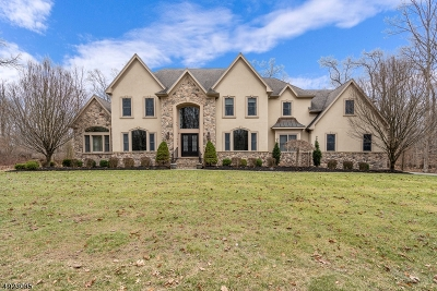 Hunterdon County Single Family Home For Sale: 19 Alexander Drive