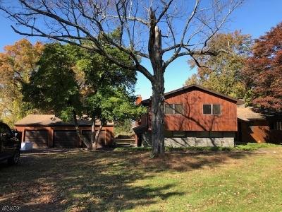 Sparta Twp. Single Family Home For Sale: 36 Fox Ridge Rd