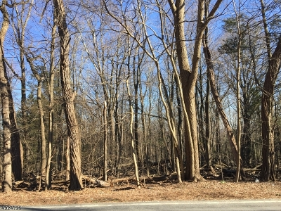 Residential Lots & Land For Sale: 430 W Saddle River Rd