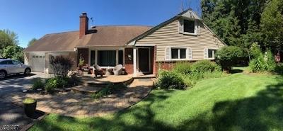 Wayne Twp. Single Family Home For Sale: 21 Ridgeview Ter