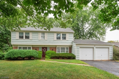 Franklin Twp. Single Family Home For Sale: 29 Abbott Rd