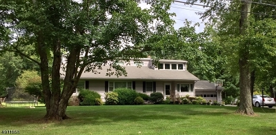 Somerset County Single Family Home For Sale: 82 Cross Rd