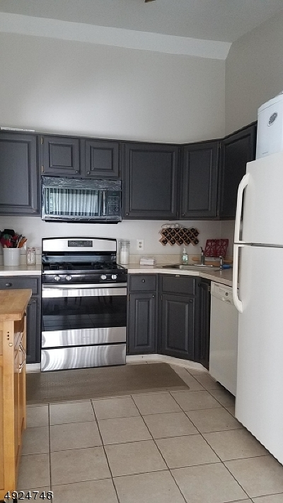 Hunterdon County Condo/Townhouse For Sale: 806 Spruce Hills Dr