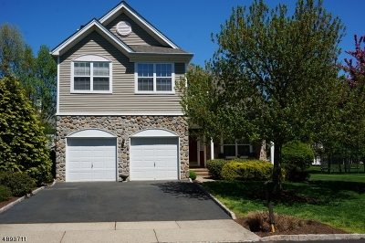 Hunterdon County Single Family Home For Sale: 7 Stonehouse Dr