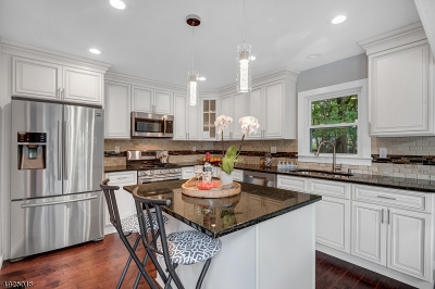 Parsippany-Troy Hills Twp. Single Family Home For Sale: 27 Hope Rd