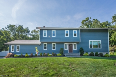 Randolph Twp. Single Family Home For Sale: 26 Red Barn Ln