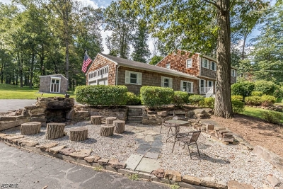 Hunterdon County Single Family Home For Sale: 12 Curtis Dr.