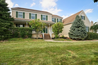 Hillsborough Twp. Single Family Home For Sale: 11 Holecomb Dr