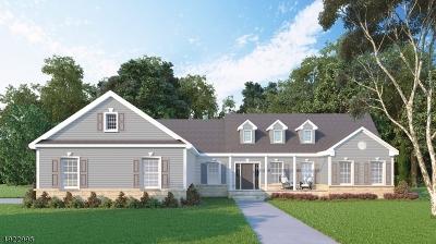 Hunterdon County Single Family Home For Sale: Cirrus Lane