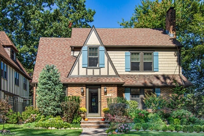 Westfield Town Single Family Home For Sale: 761 Belvidere Ave