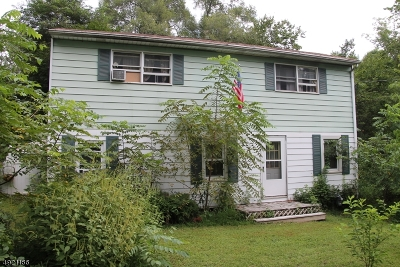 Hunterdon County Single Family Home For Sale: 29 Pulaski Rd