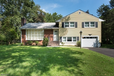 Hunterdon County, Somerset County Single Family Home For Sale: 470 Milcrip Road