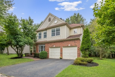 Montgomery Twp. Single Family Home For Sale: 16 Rutgers Ln