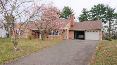 Franklin Twp. Single Family Home For Sale: 7 Lebed Dr