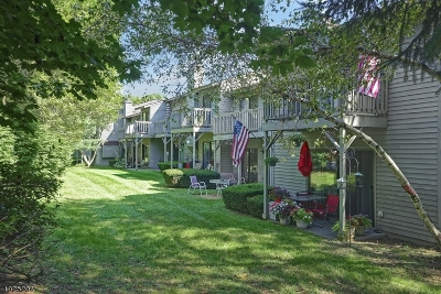 Hunterdon County Condo/Townhouse For Sale: 1403 Spruce Hills Dr