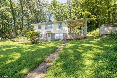 Hunterdon County Single Family Home For Sale: 14 Superfine Rd