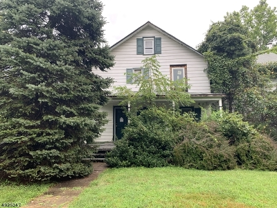 Montville Twp. Single Family Home For Sale: 74 River Rd