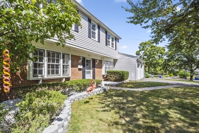 Franklin Twp. Single Family Home For Sale: 10 Neptune Ct
