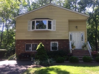 Parsippany-Troy Hills Twp. Single Family Home For Sale: 165 Everett Rd