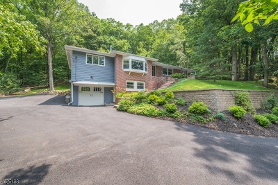 Denville Twp. Single Family Home For Sale: 68 Kitchell Rd